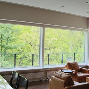 マウンテンサイド白馬 新緑の季節のリビングルームからの眺め
