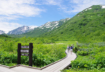 Tsugaike national park