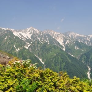 Hakuba Green season